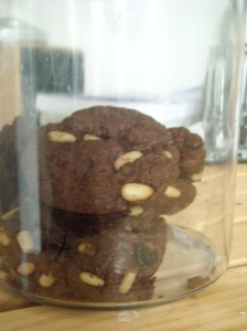 cryslerandcookies-001