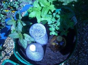 garden070508 008